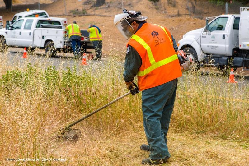Oakland Grasscutting