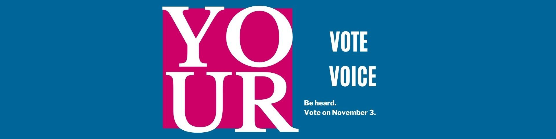 Red and Light Blue Voter Education Banner2