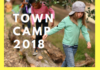 Town Camp 2018
