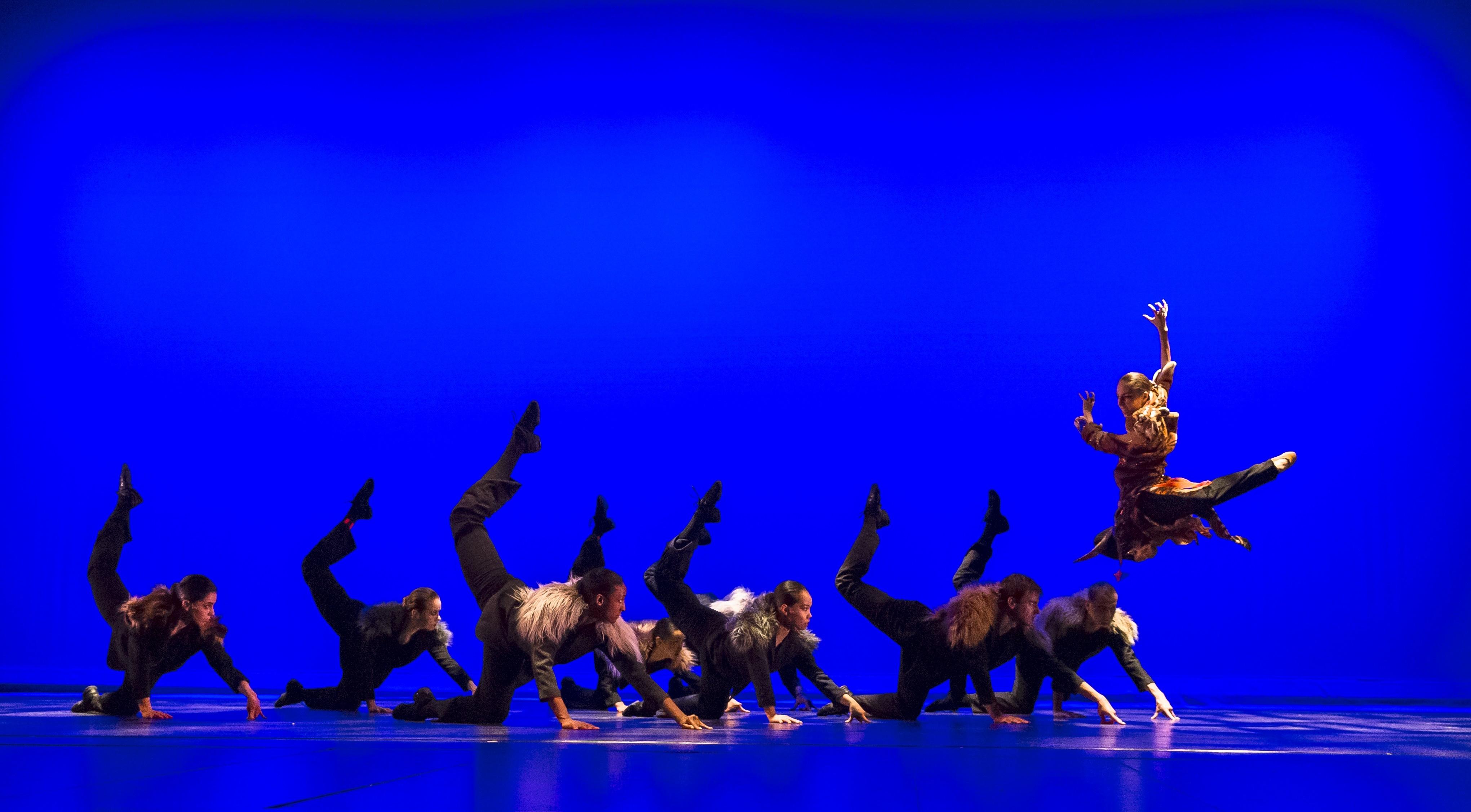 Oakland Ballet Jangala For Oct Newsletter